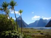 Amy  - Nieuw-Zeeland -